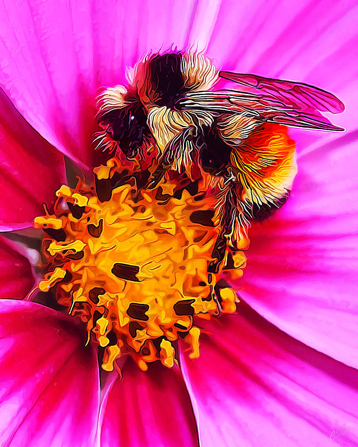 Nature Digital Art - Big Bumble On Pink by Bill Caldwell -        ABeautifulSky Photography