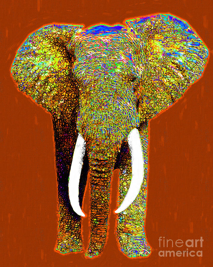 Elephant Photograph - Big Elephant 20130201p20 by Wingsdomain Art and Photography