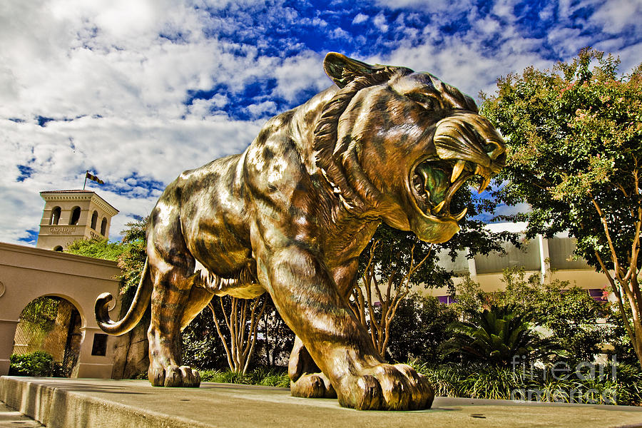 Mike The Tiger Photograph - Big Mike by Scott Pellegrin