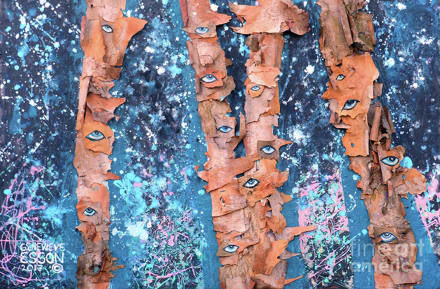 Birch Trees With Eyes Mixed Media