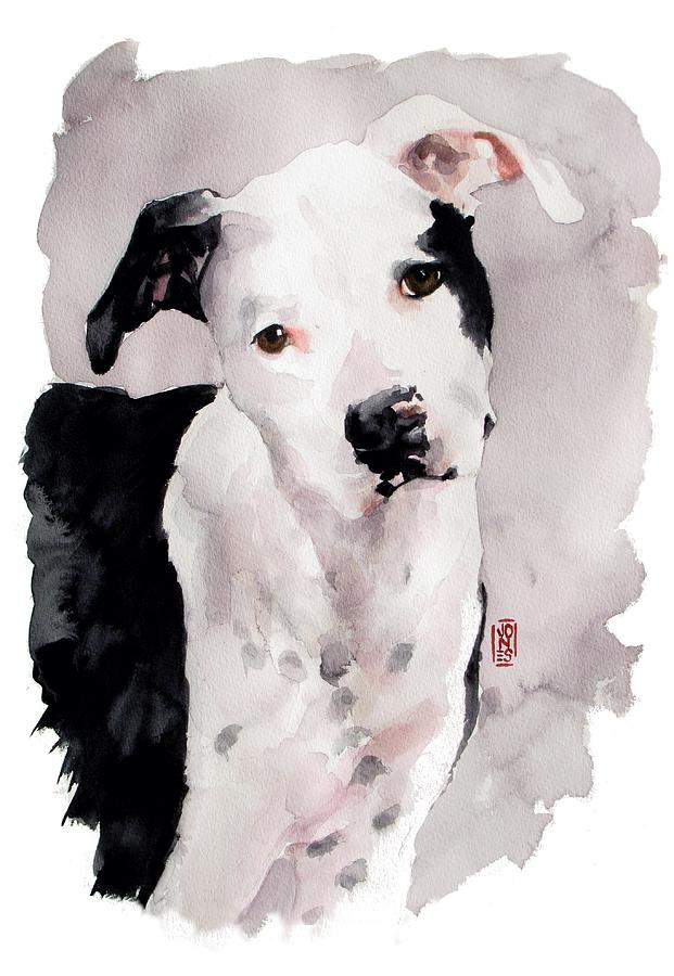 Pit Bull Dog Painting - Black And White Pit by Debra Jones