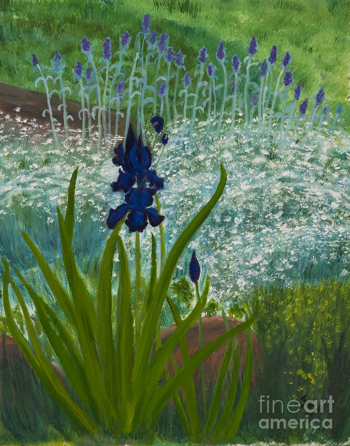 Iris Framed Art