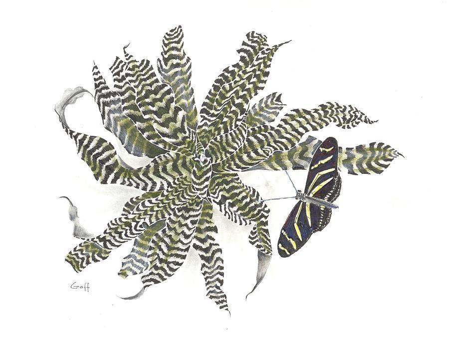 Bromeliad Drawing - Black Magic by Penrith Goff