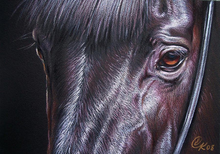 Horse Animal Portrait Equine Drawing Drawing - Black Stallion by Elena Kolotusha