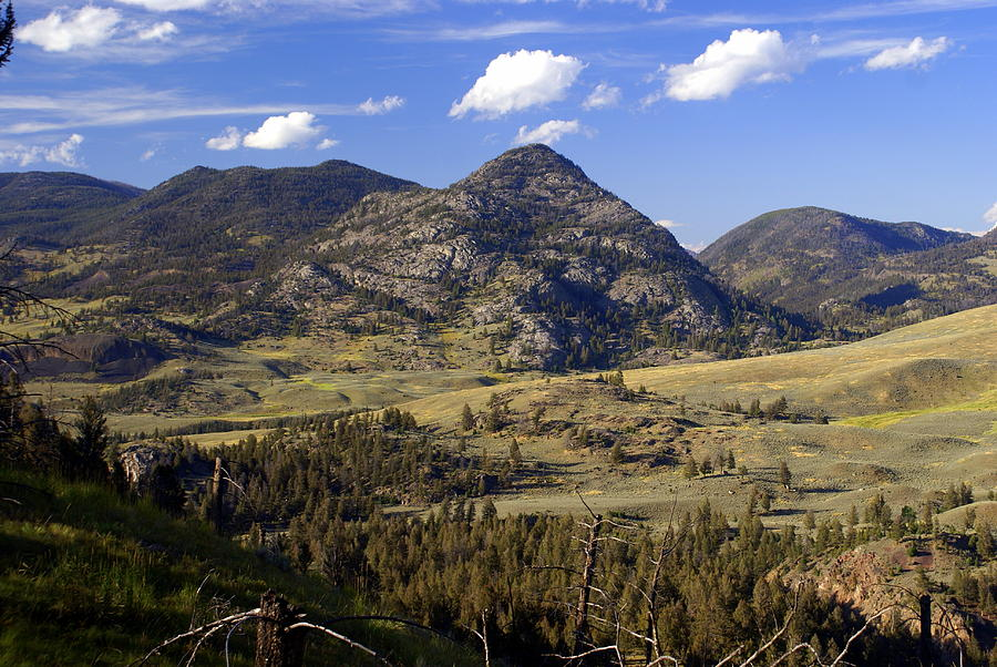 Yellowstone National Park Photograph - Blacktail Road Landscape 2 by Marty Koch