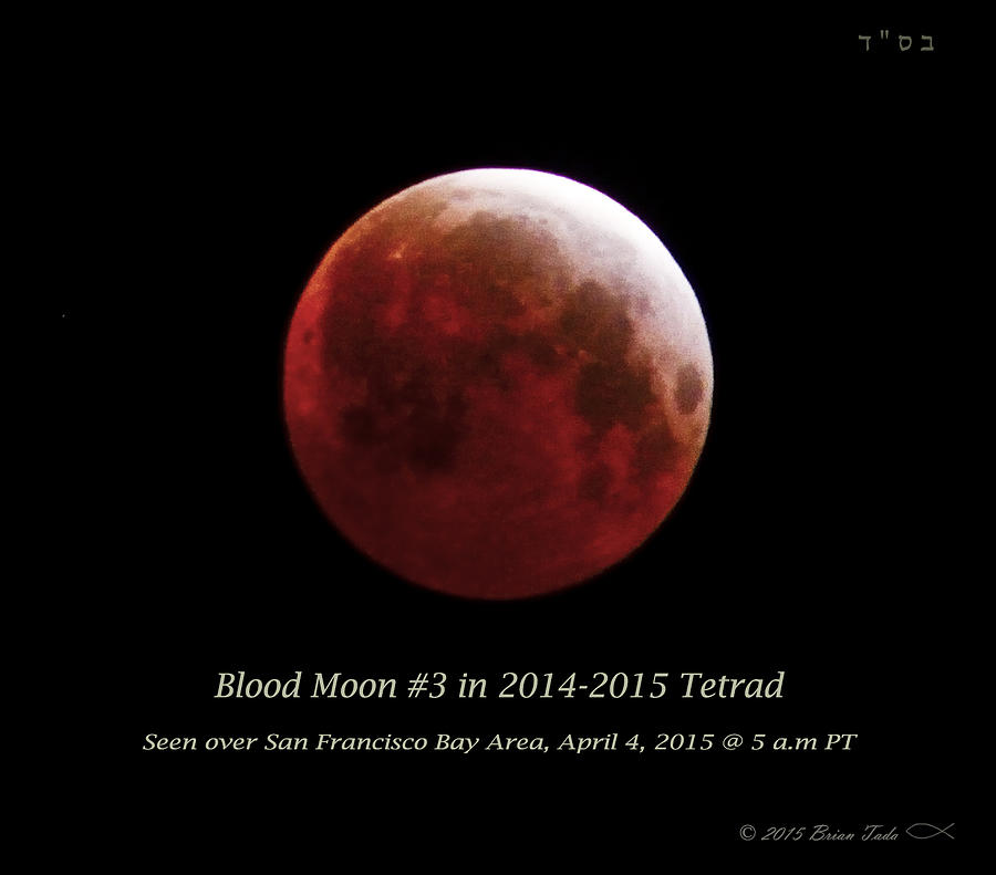 Blood Moon # 3 In Tetrad Photograph by Brian Tada