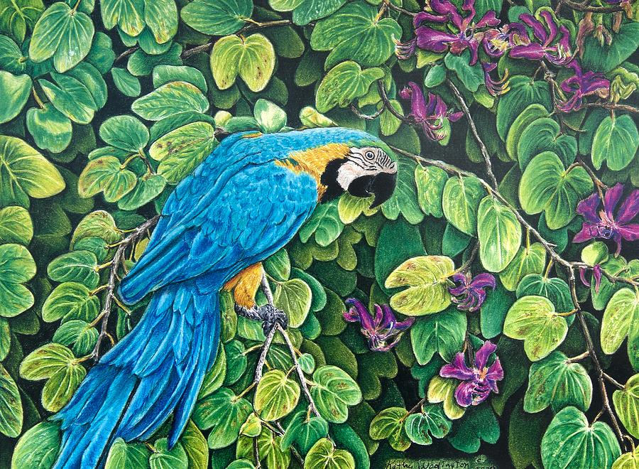 Blue And Gold Macaw Among The Leaves Painting By Kathy