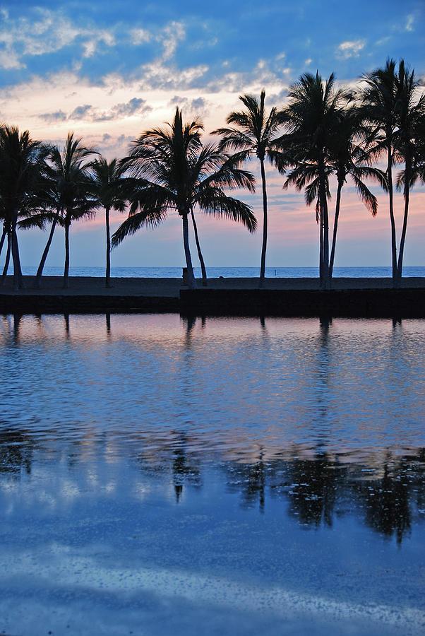 Anaehoomalu Bay Blue Hawaiian Kona Hawaii Palm Trees Landscape Photography Canvas Colors Beach Sunset Silhouette Photograph - Blue Hawaiian by Kelly Wade