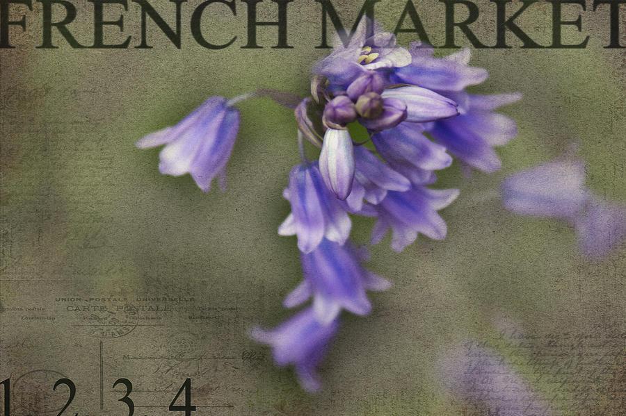 Blue Bells Photograph - Bluebells by Rebecca Cozart