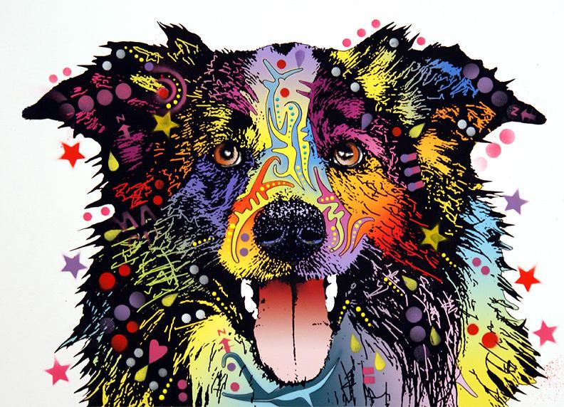 dean Russo Painting Dog Dogs border Collie Portrait Graffiti pop Art Pop Pet Pets Border Collie Herding herding Dog working Dog Painting - Border Collie 2 by Dean Russo