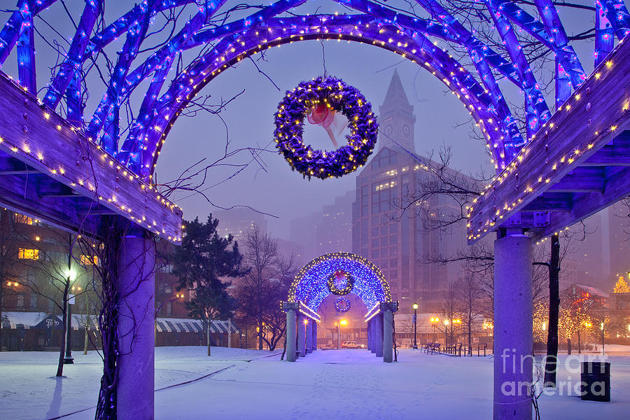 Boston Blue Christmas Photograph