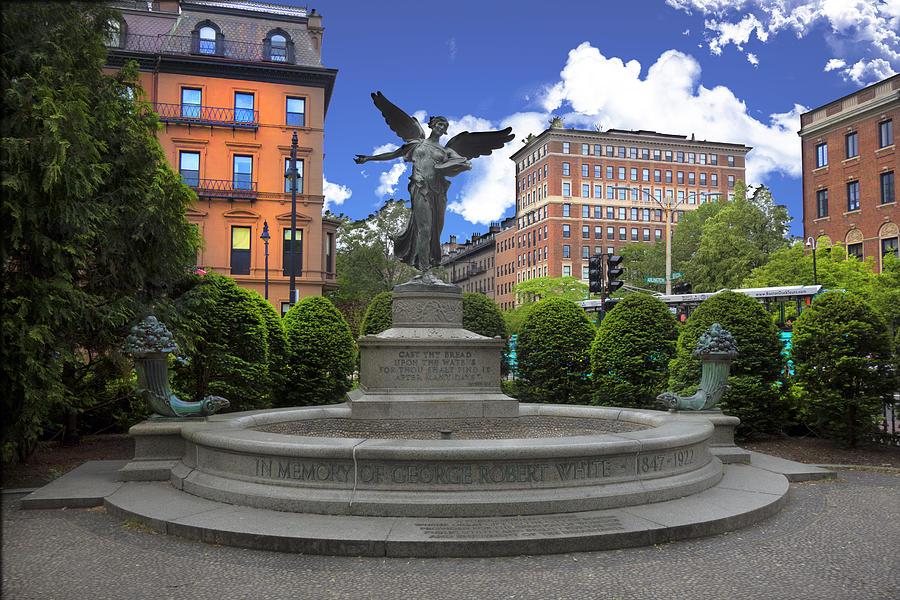Boston Public Gardens Park Y4 Photograph By Carlos Diaz