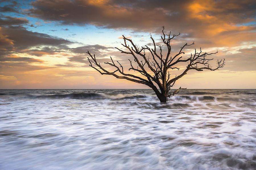Charleston Sc Photograph - Botany Bay Edisto Island Sc Boneyard Beach Sunset by Dave Allen