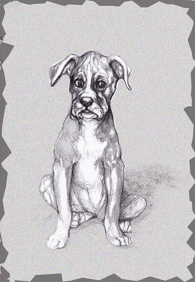 Dog Mixed Media - Boxer Pup by Peggy Wilson