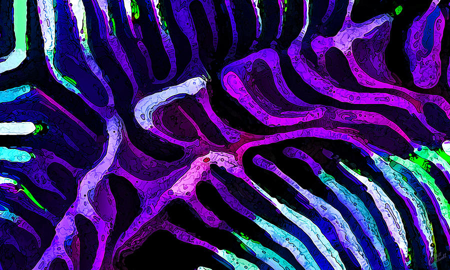 Nature Digital Art - Brain Coral Abstract 3 In Purple by Bill Caldwell -        ABeautifulSky Photography