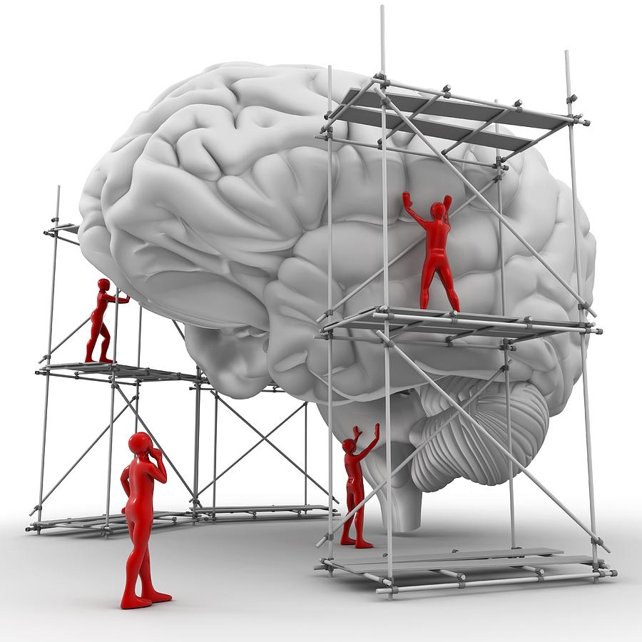 Alzheimer's Photograph - Brain With Workers, Mental Health by Pasieka