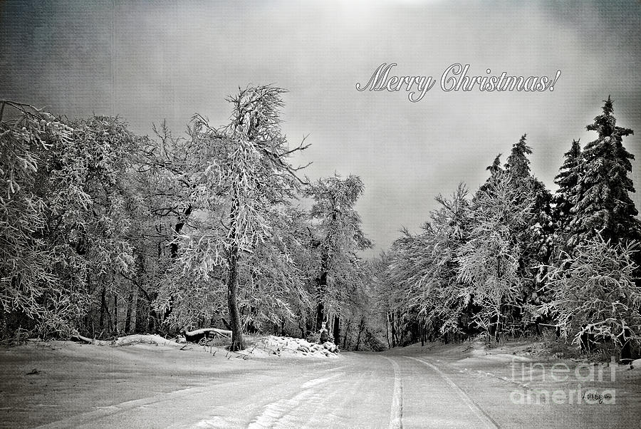 Christmas Photograph - Break In The Storm Christmas Card by Lois Bryan
