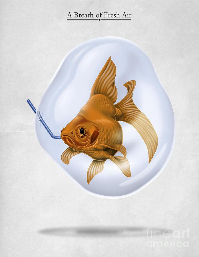 Goldfish Drawing - Breath Of Fresh Air by Rob Snow