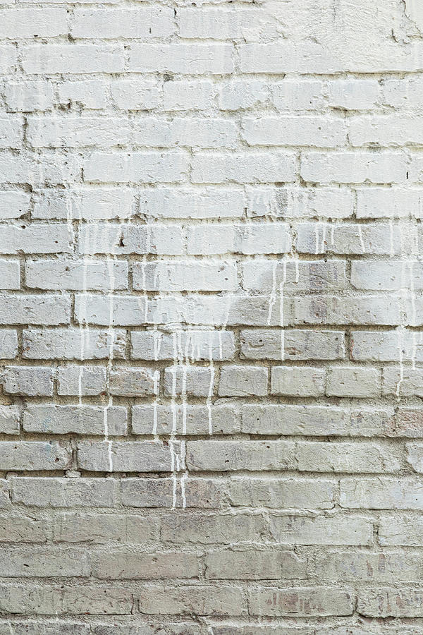 Bricks And Paint Dripping Portrait Photograph
