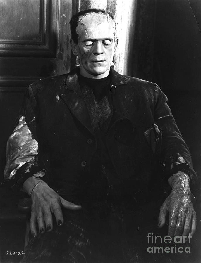 Bride Of Frankenstein Boris Karloff Photograph By R
