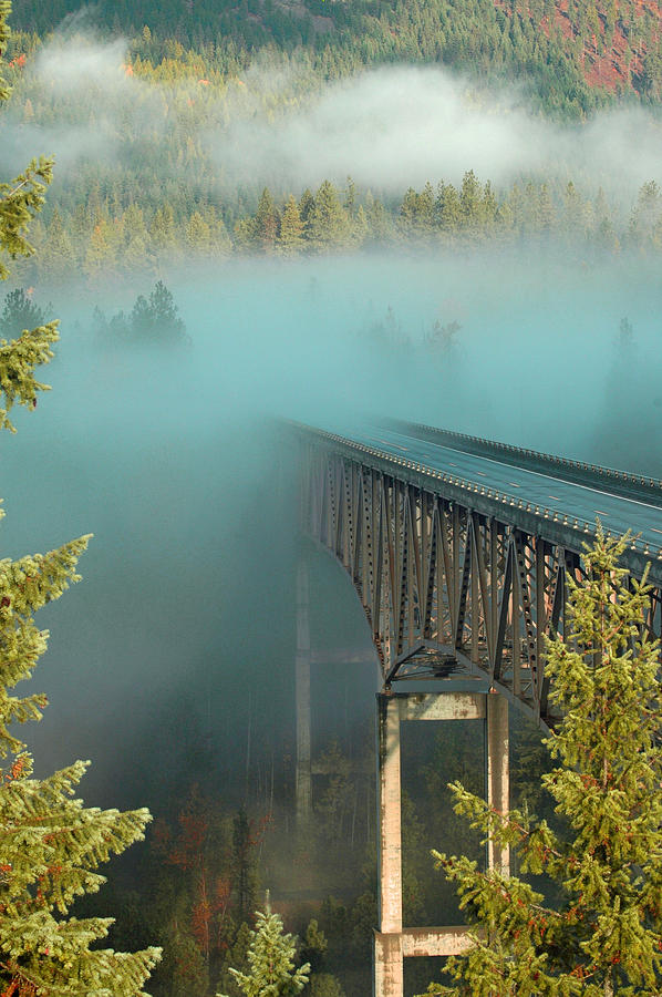 Bridge Photograph - Bridge In The Mist by Annie Pflueger