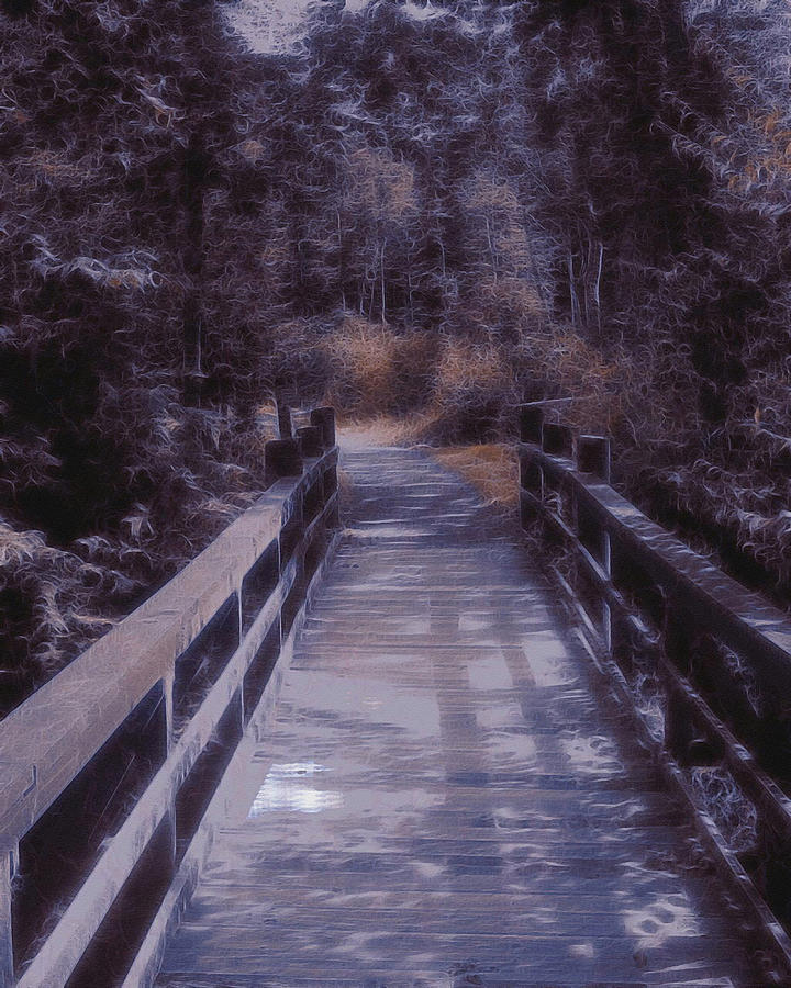 Bridge Shenandoah Valley Virginia Usa Night Shadows Eerie Creepy  Digital Art - Bridge In The Shenandoah by Susan  Epps Oliver