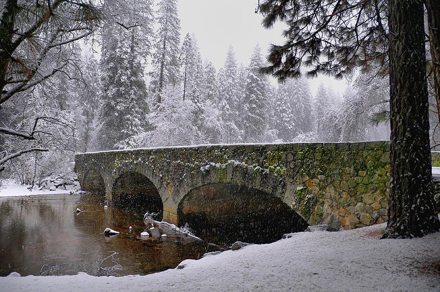 Landscape Photograph - Bridge Over The Merced by Frank Remar
