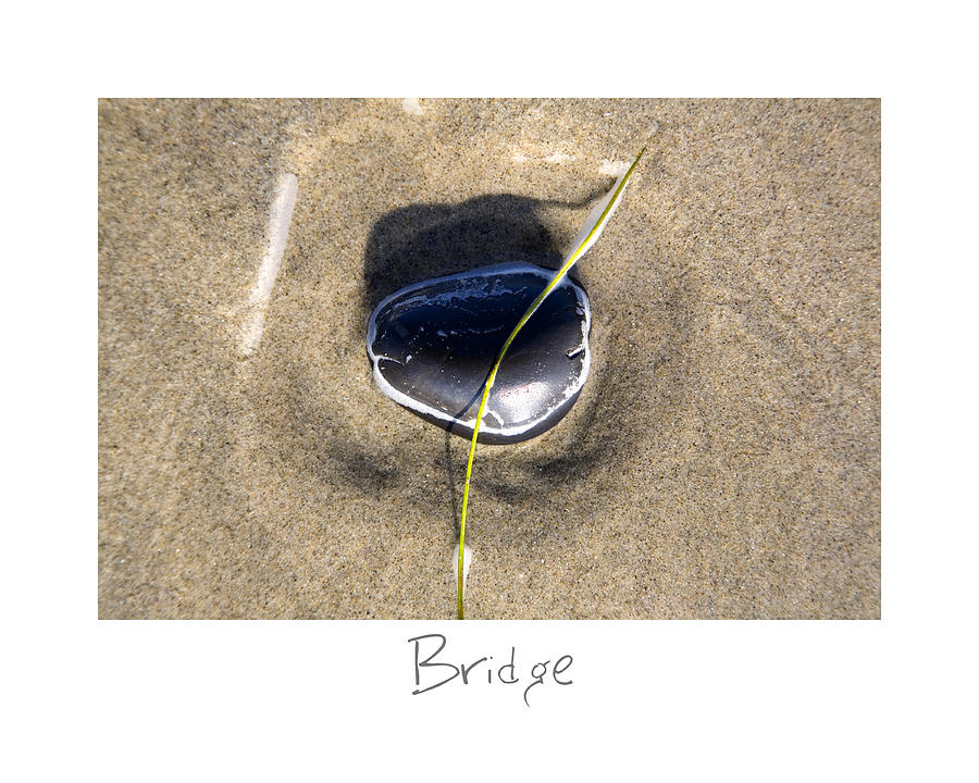 Beach Art Photograph - Bridge by Peter Tellone