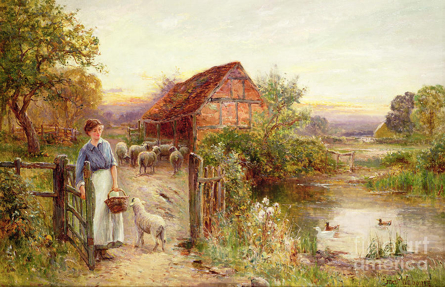 Bringing Home The Sheep Painting