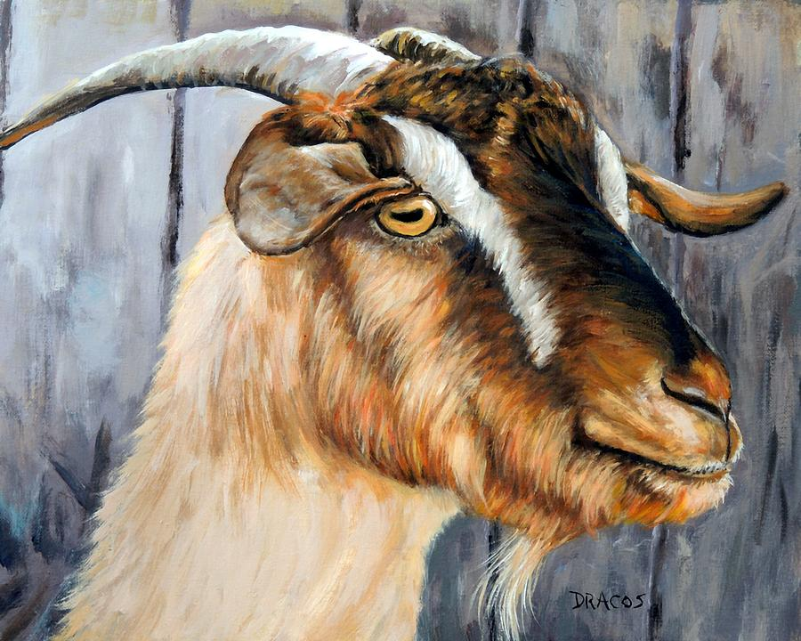 Brown Cashmere Goat Painting Painting By Dottie Dracos