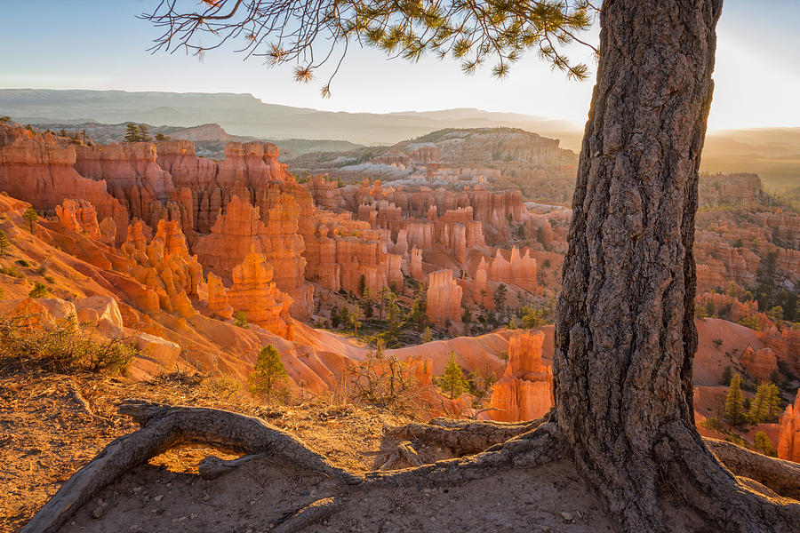 bryce canyon national park single mature ladies Military families get free passes to  thor's hammer at sunset at bryce canyon national park  men and women and their families a chance to .