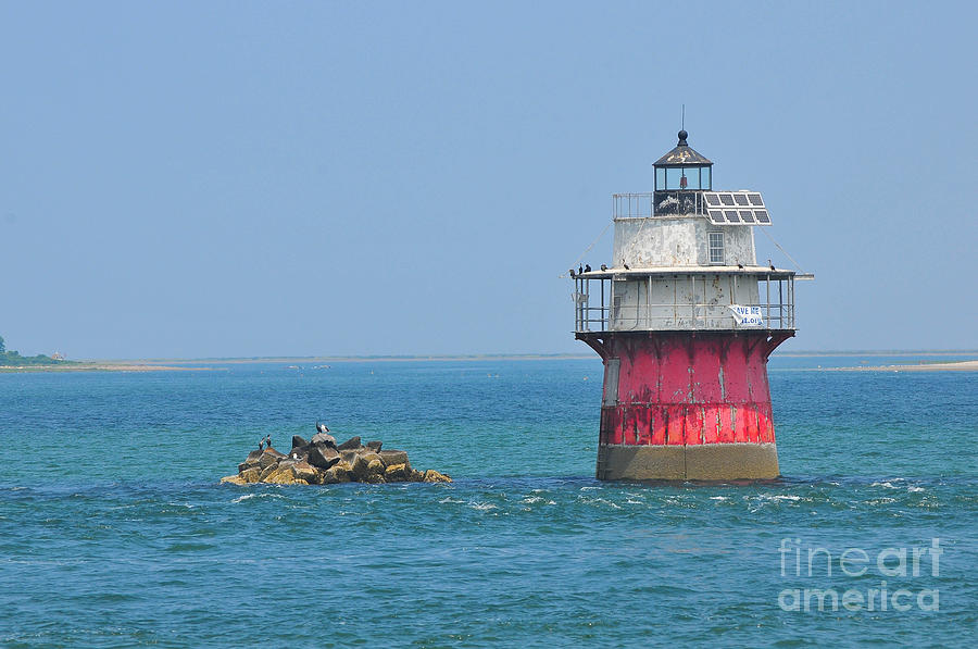 Plymouth Ma Photograph Photograph - Bug Light by Catherine Reusch  Daley