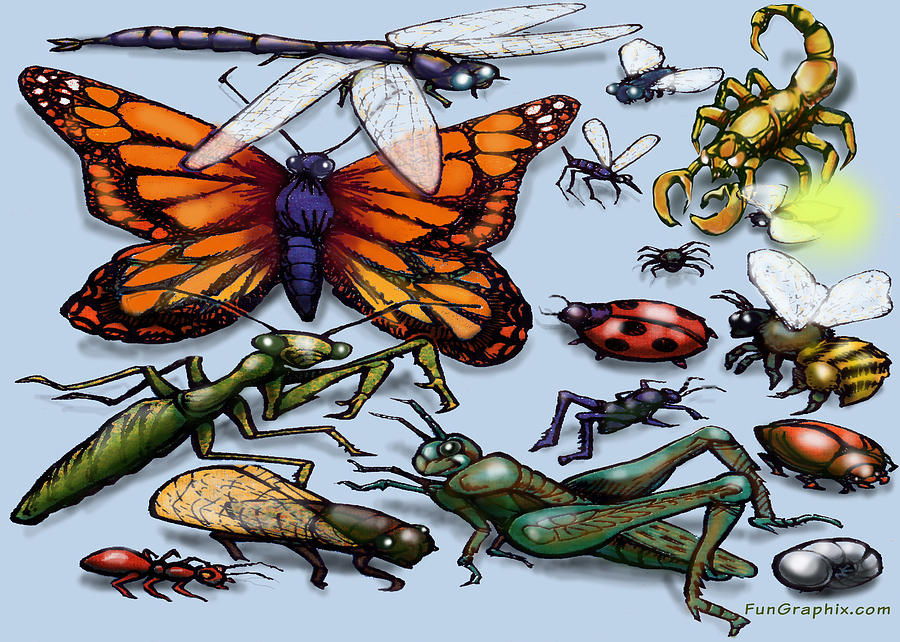 Bug Painting - Bugs by Kevin Middleton
