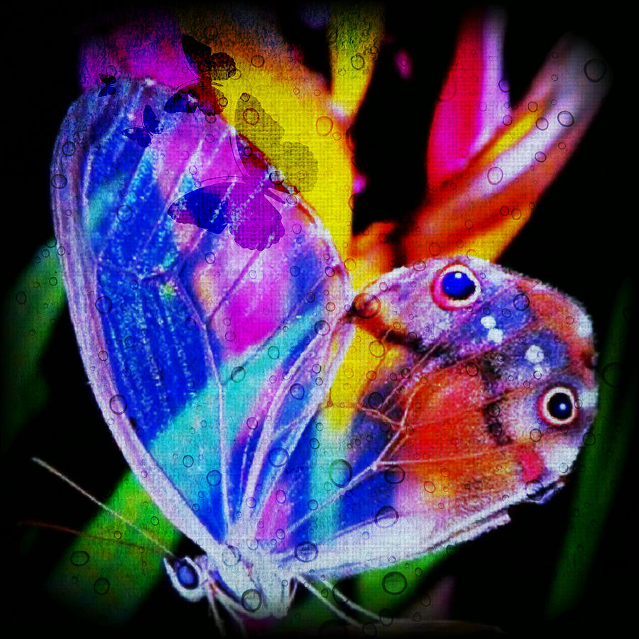 Butterflies Are Free Digital Art