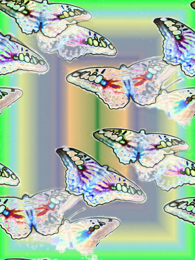 Butterflies Photograph - Butterflies In The Vortex by Tim Allen
