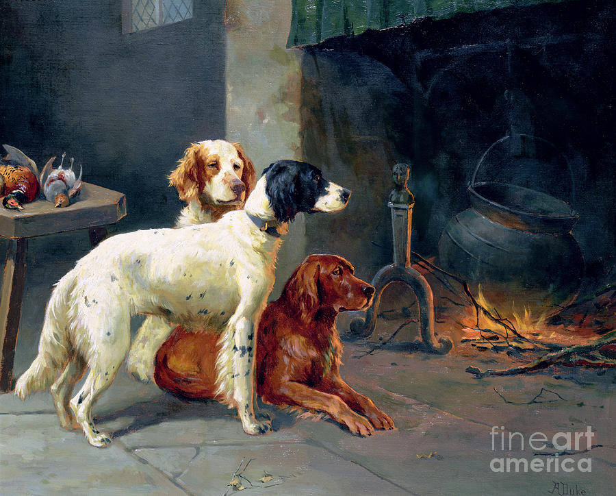 Dogs; Pheasants; Gundogs; Hearth; Cooking Pot; Irons; Irish Red Setter; English Setter; Working Dog Painting - By The Fire by Alfred Duke