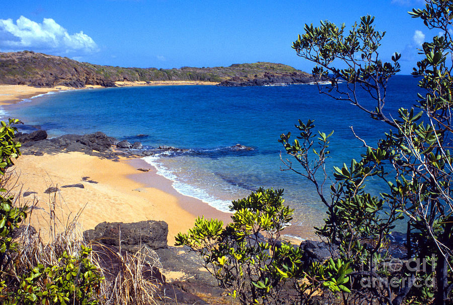 Puerto Rico Photograph - Cabeza Chiquita El Convento Beach by Thomas R Fletcher