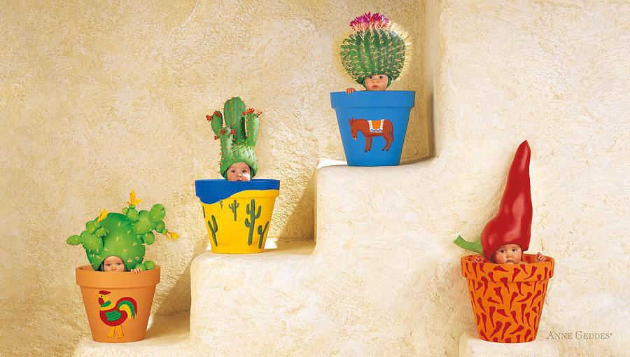 Cactus Pots Photograph - Cactus Pots by Anne Geddes