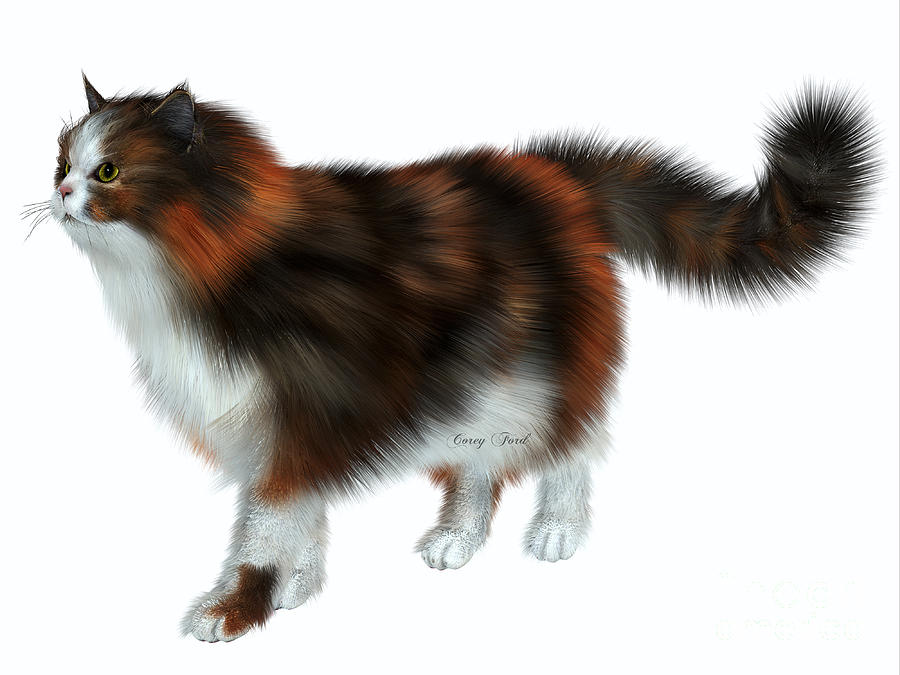 Cat Painting - Calico Cat by Corey Ford