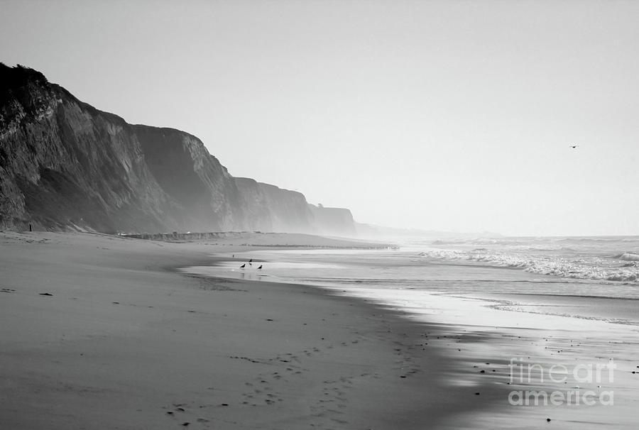 California Shoreline Photograph