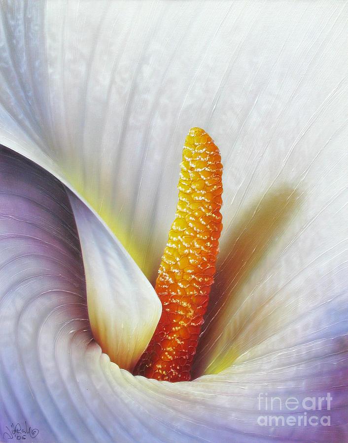 Flowers Painting - Calla Lily by Jurek Zamoyski