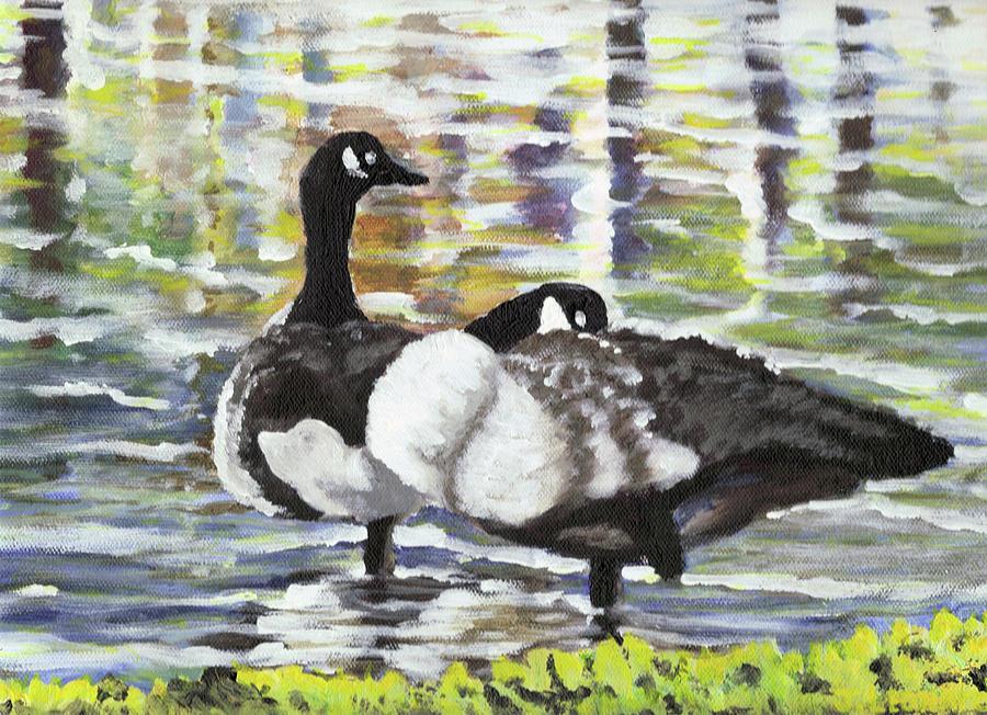 Canada Geese At Ballard Park Painting