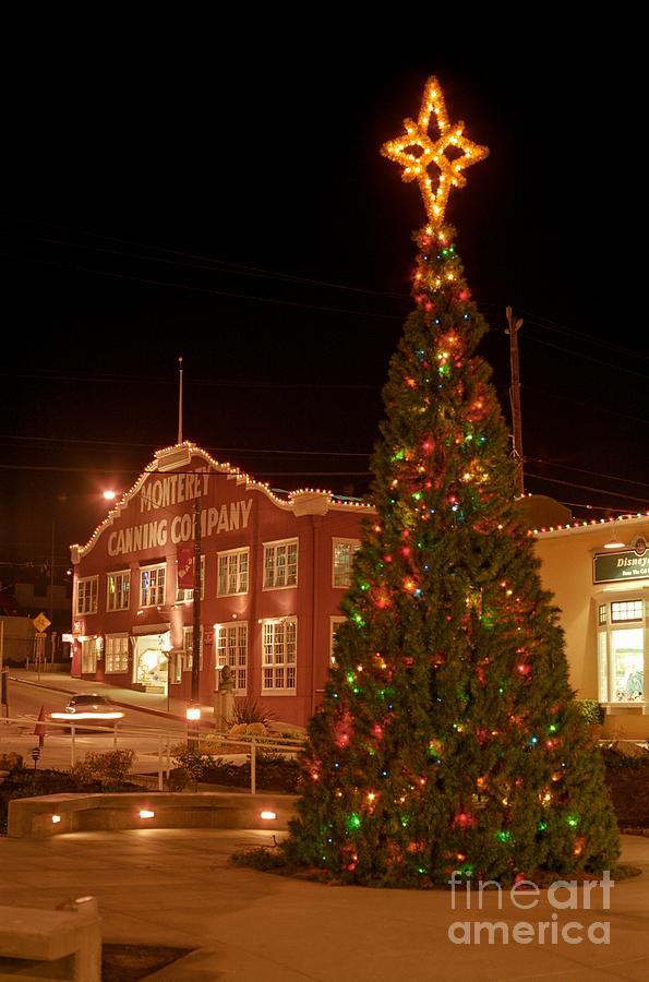Cannery Row Christmas Tree Photograph