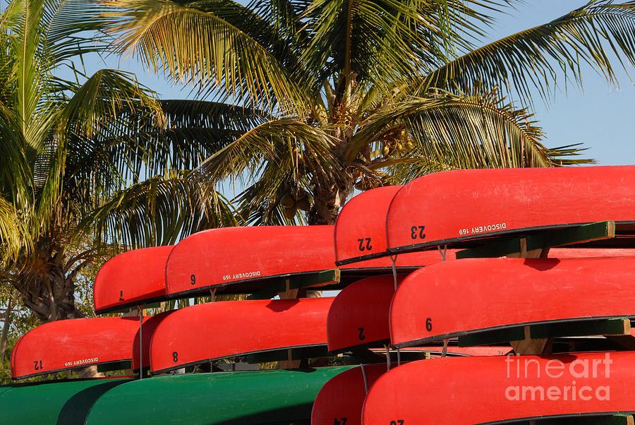Canoes At Flamingo Photograph