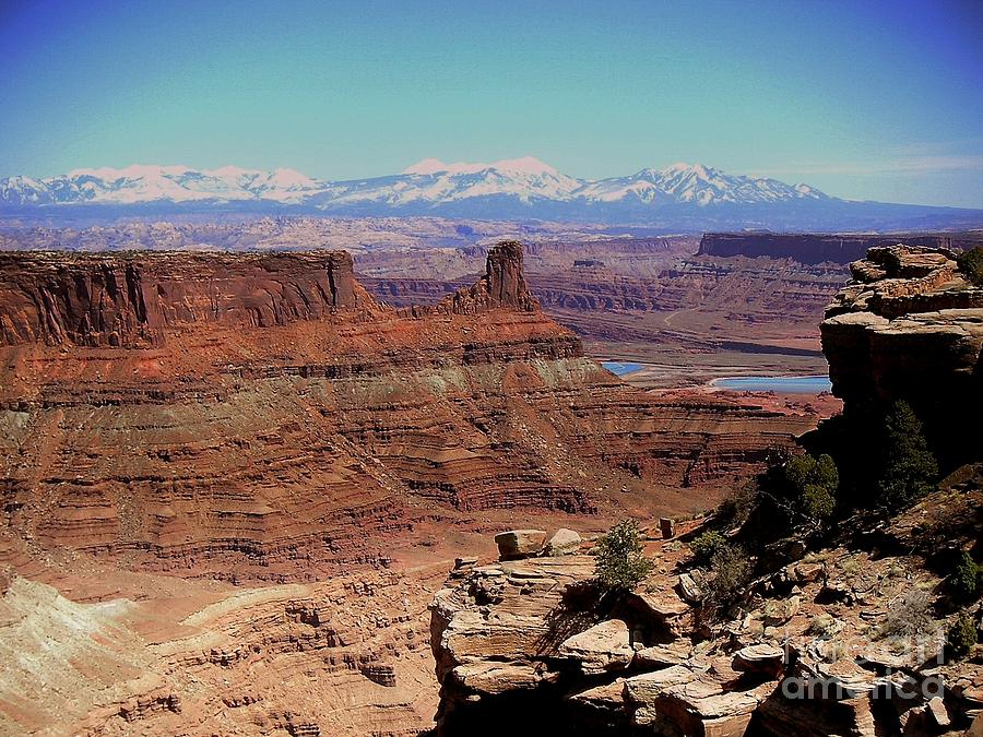 Canyon Photograph - Canyonlands 5 by Marty Koch