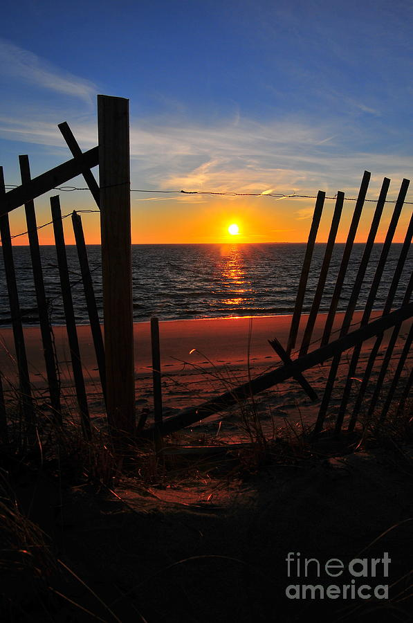Sunset Photograph - Cape Cod Sunset by Catherine Reusch  Daley