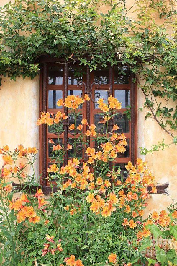 Alstroemeria Photograph - Carmel Mission Window by Carol Groenen