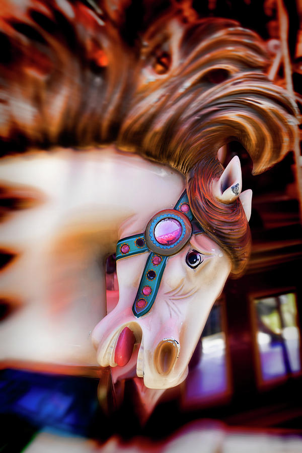 Carousel; Horse; Merry -go- Round; Horses; Amuse; Amusement; Park; Carrousels; Ride; Fairs; Entertainment; Spinning; Fantasy; Motion; County Fair; Pony; Childhood; Nostaigia; Antiques; Moody; Graphic; Worn; Mane; Animal; Vertical; Still Life Photograph - Carousel Horse Portrait by Garry Gay