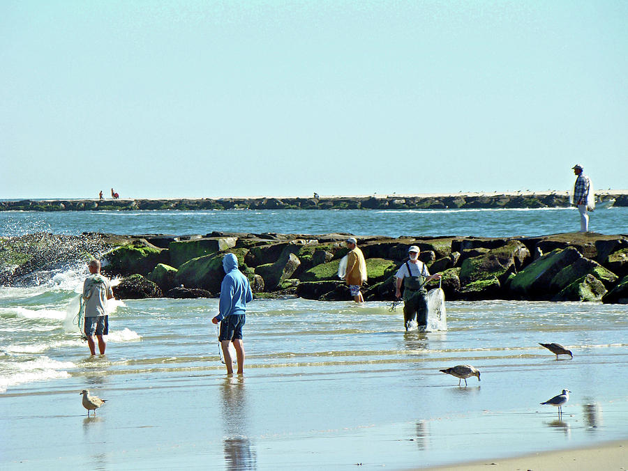 Casting their nets for bait fish island beach state park for Island beach state park fishing