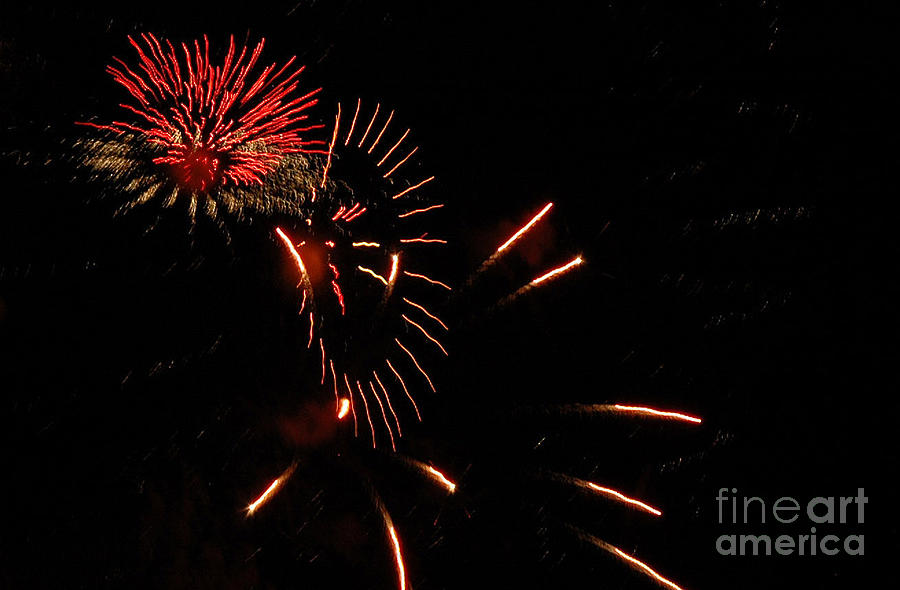 4th Of July Photograph - Cat Burst by Norman  Andrus